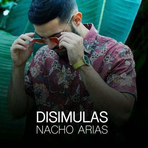 Disimulas by Nacho Arias