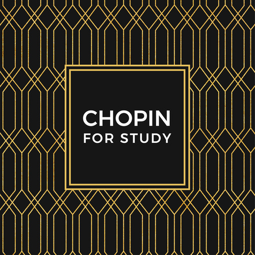 Chopin For Study von Various Artists