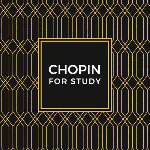 Chopin For Study de Various Artists