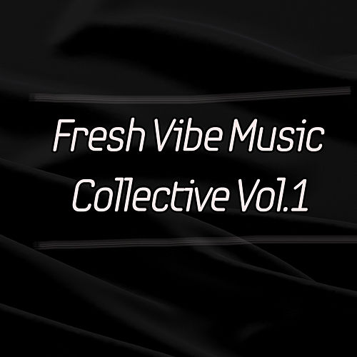 Fresh Vibe Music Collective, Vol. 1 by Various Artists