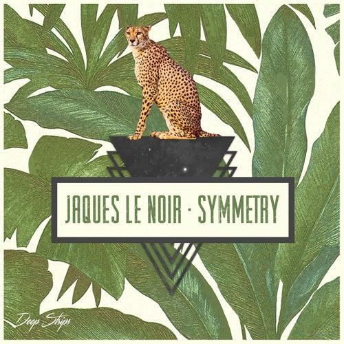 Symmetry - EP by Jaques Le Noir