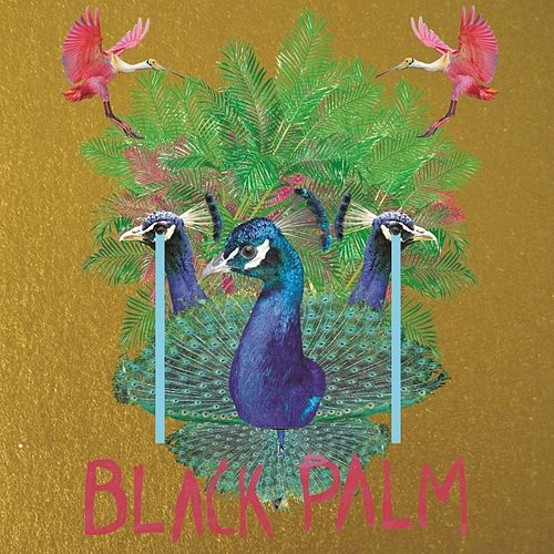 Black Palm de Vertical