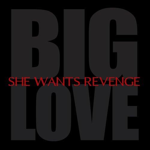 Big Love by She Wants Revenge