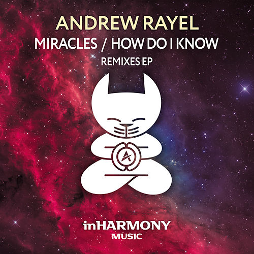 Miracles / How Do I Know (Remixes EP) by Andrew Rayel