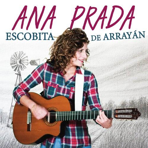 Escobita de Arrayán by Ana Prada