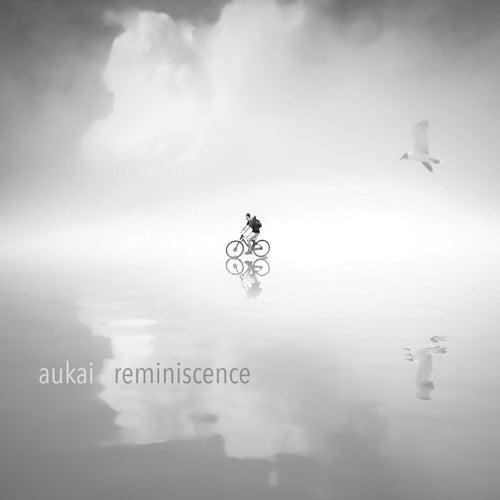 Reminiscence by Aukai
