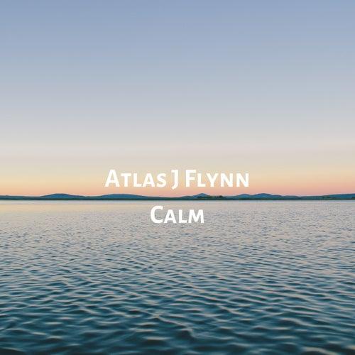 Calm by Atlas J Flynn
