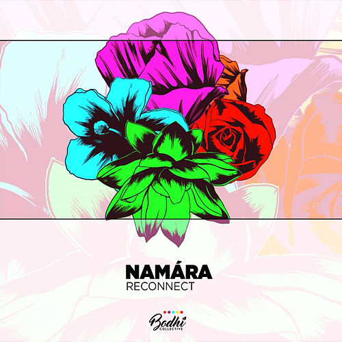 Reconnect EP de Namára