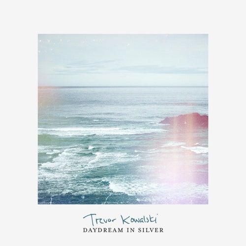 Daydream In Silver by Trevor Kowalski