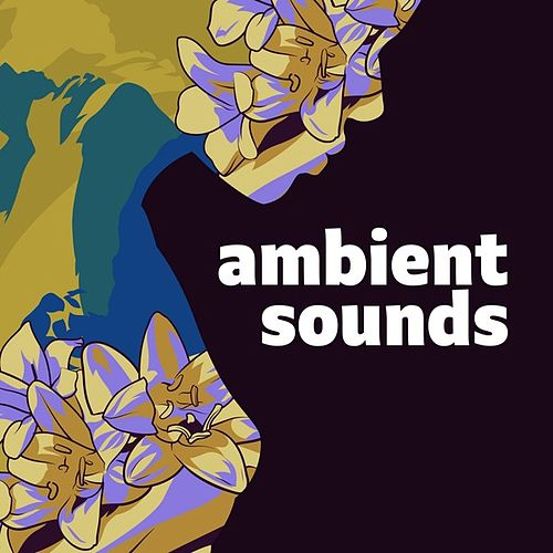 Ambient Sounds de Various Artists