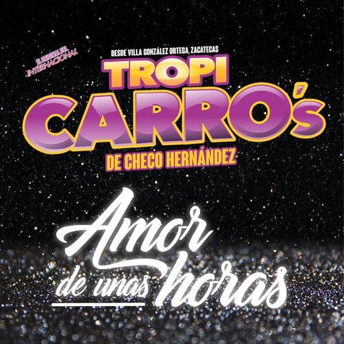 Amor de Unas Horas von Tropi Carro's De Checo Hernández