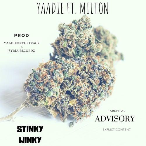 Stinky Winky by Yaadie