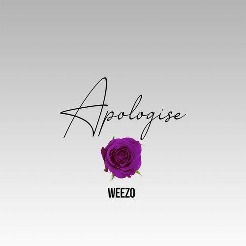 Apologise von Weezo