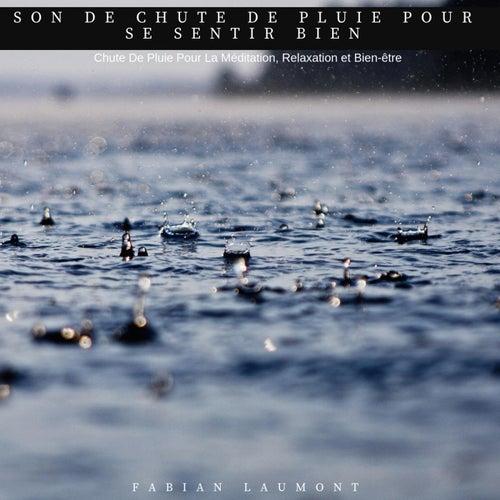 Son de chute de pluie pour se sentir bien (Chute de pluie pour la méditation, relaxation et bien-être) von Various Artists