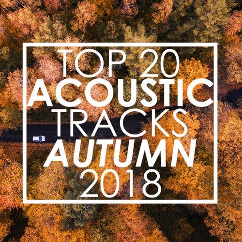 Top 20 Acoustic Tracks Autumn 2018 de Guitar Tribute Players