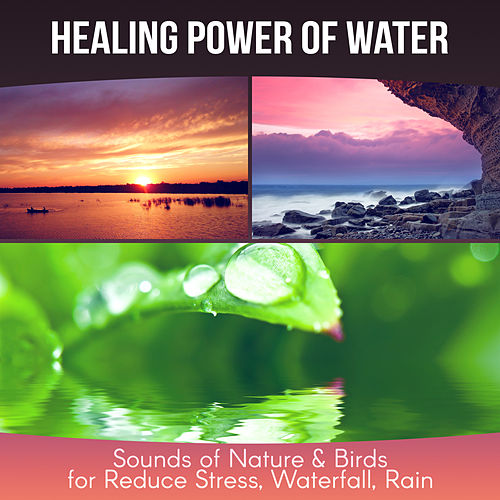 Healing Power of Water - Therapy Music for Yoga Meditation, Sounds of Nature & Birds for Reduce Stress, Waterfall, Rain by Calm Music Zone (1)