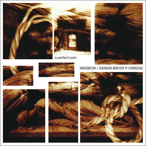A Perfect Pain von Merzbow