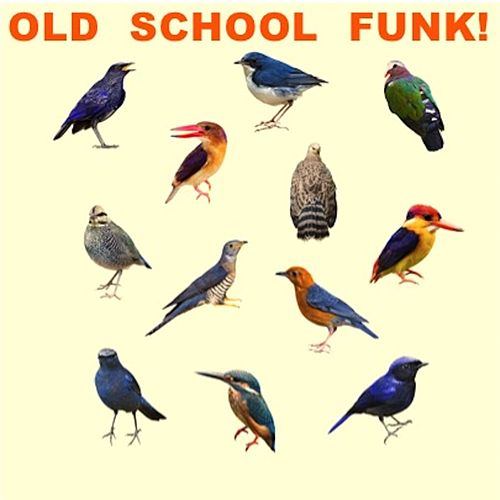 Old School Funk! de Various Artists