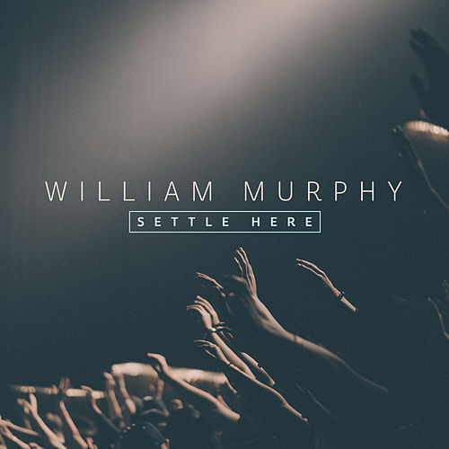 Settle Here by William Murphy