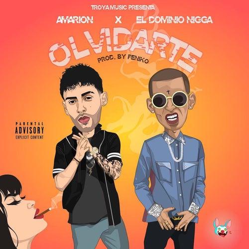 Olvidarte by Amarion