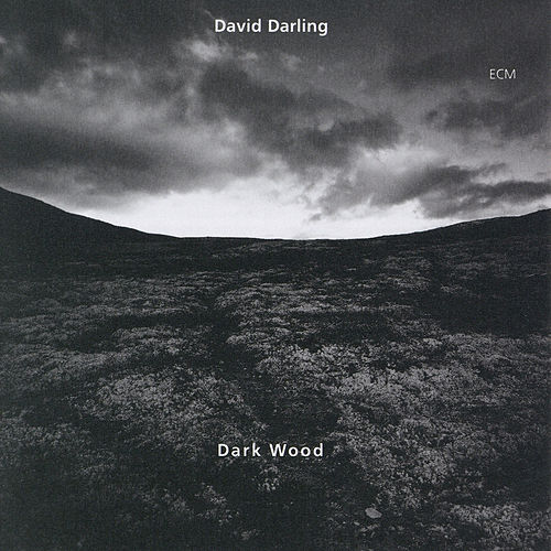Dark Wood de David Darling