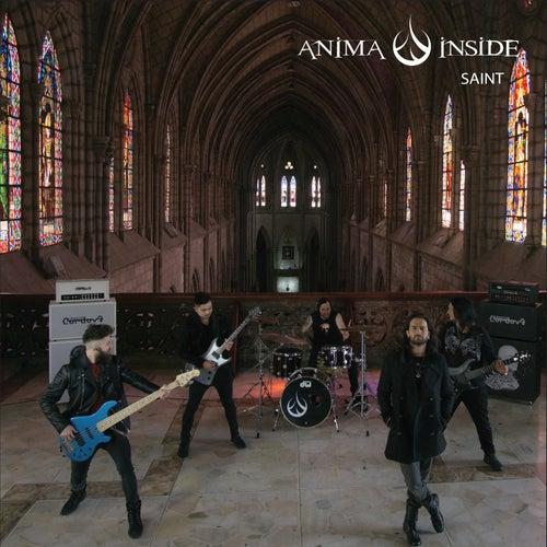 Saint de Anima Inside
