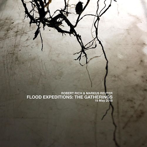 Flood Expeditions: The Gatherings, 19 May 2018 de Robert Rich