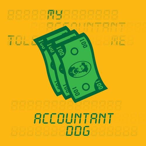Accountant by DDG