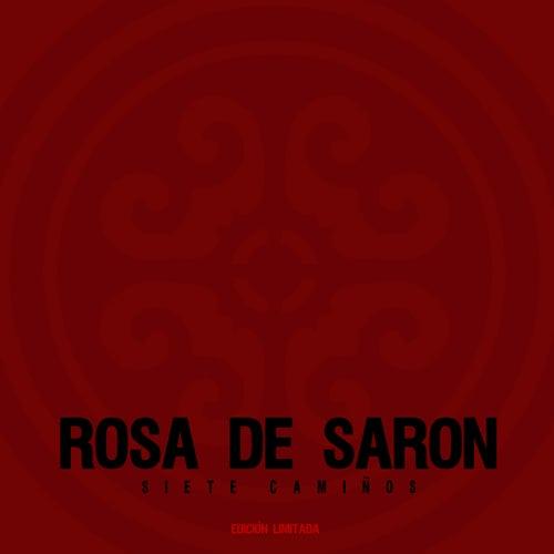 Siete Caminos de Rosa de Saron