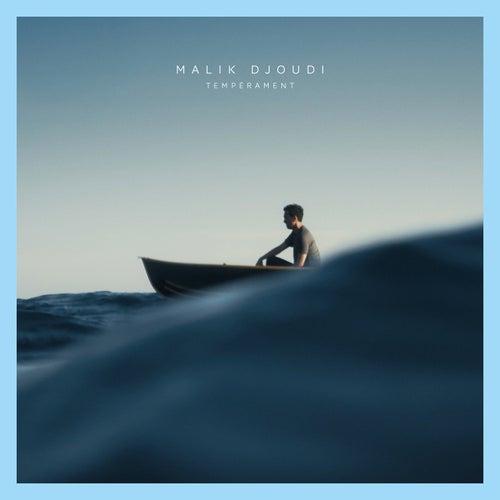 Tempérament - Single by Malik DJOUDI
