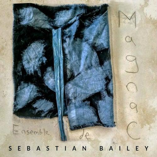Ensemble De Magnac by Sebastian Bailey