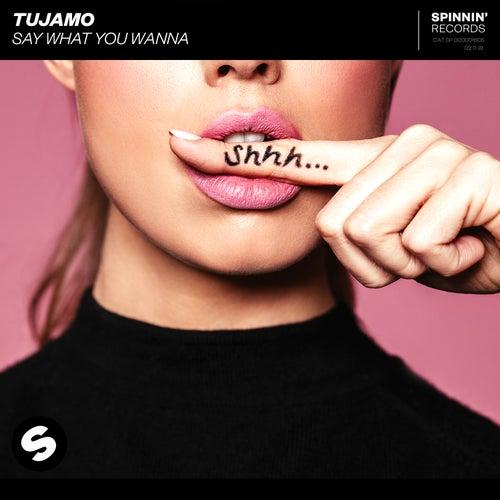 Say What You Wanna de Tujamo