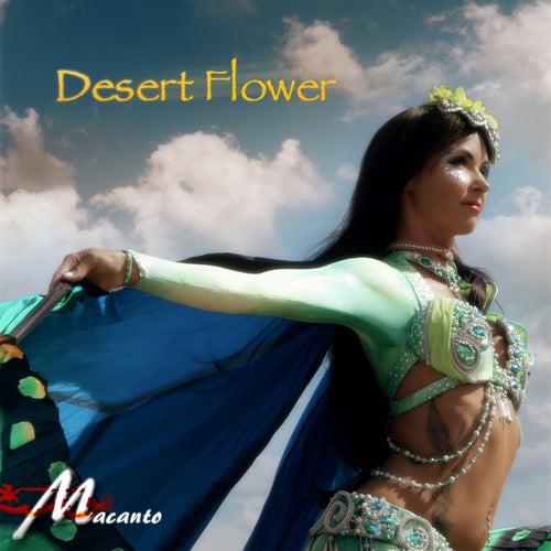 Desert Flower von Macanto