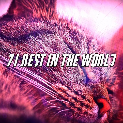 71 Rest In The World von Best Relaxing SPA Music