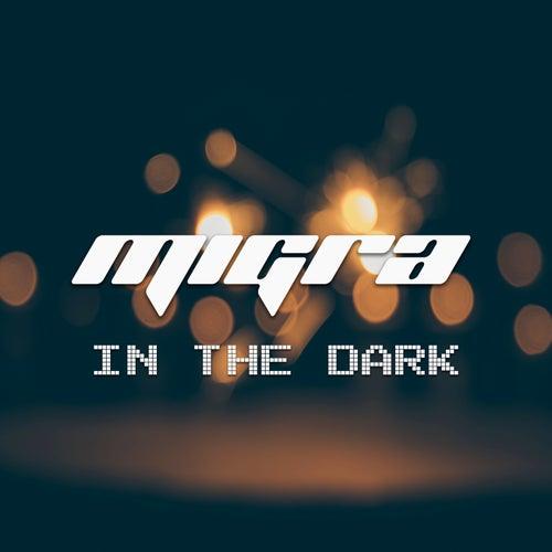 In The Dark by La Migra