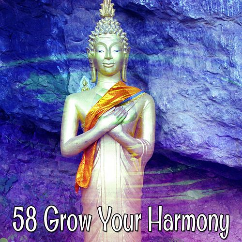58 Grow Your Harmony by Asian Traditional Music