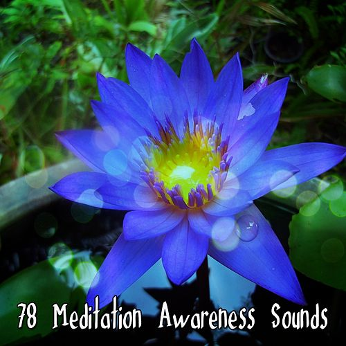 78 Meditation Awareness Sounds von Entspannungsmusik