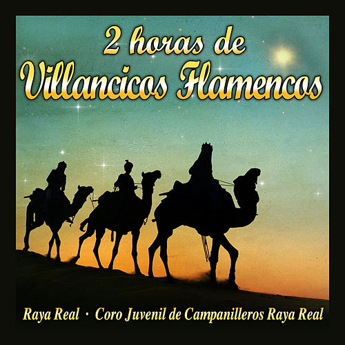 2 Horas de Villancicos Flamencos de Various Artists