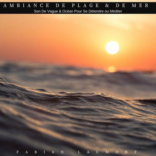 Ambiance de plage & de mer (Son de vague & océan pour se détendre ou méditer) de Fabian Laumont