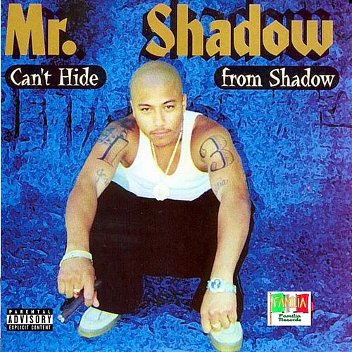 Can't Hide from Shadow de Mr. Shadow