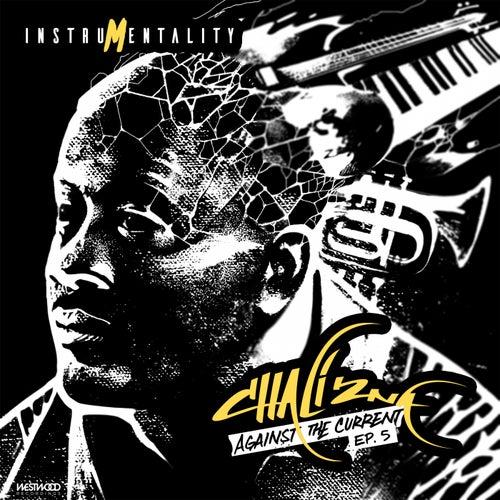Instrumentality EP de Chali 2NA