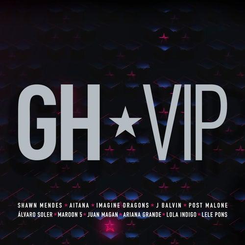 GH VIP de Various Artists