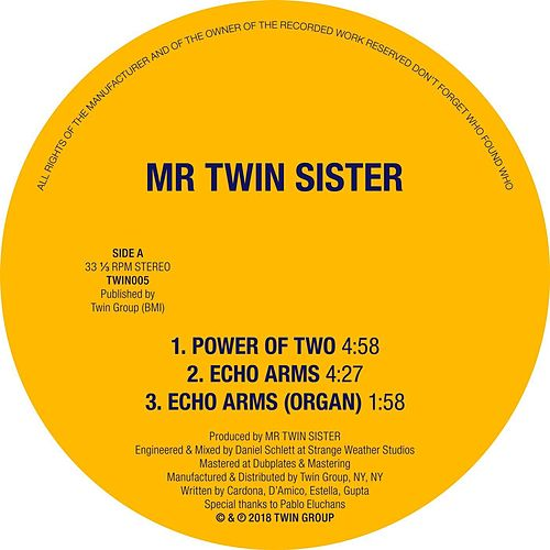 Power of Two / Echo Arms de Mr Twin Sister