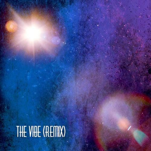 The Vibe (Remix) de Audible Doctor