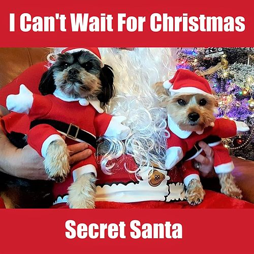 I Can't Wait for Christmas by Secret Santa