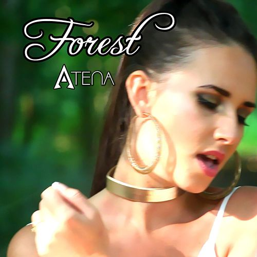 Forest by Atena
