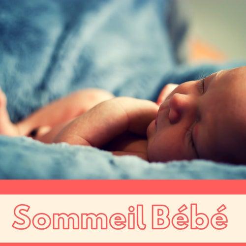 Sommeil Bébé - Berceuse pour bébé et bruits de la nature de Berceuse Academie