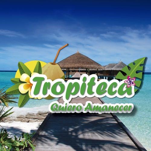 Tropiteca / Quiero Amanecer de Various Artists
