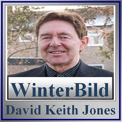 WinterBild de David Keith Jones