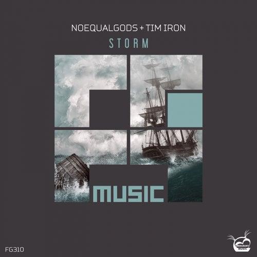 Storm de Noequalgods